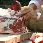 """Sfida in esterna - """"Sua Maestà la bistecchina"""""""