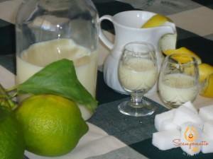Crema di limoncino