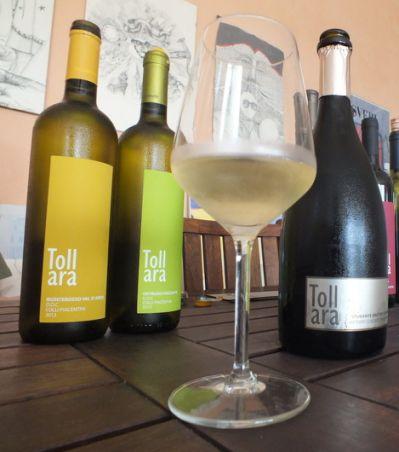 Il Monterosso, storico vino dei colli piacentini