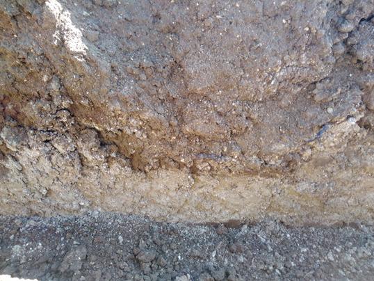 Il suolo, inizio di un viaggio nel calice